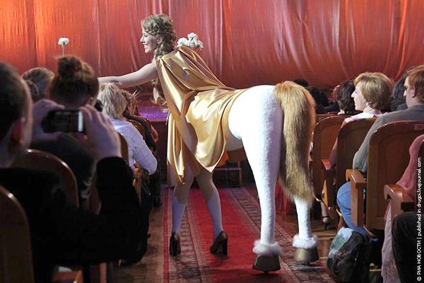 собчак лошадь фотожабы